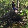 Birkus Cherry profile photo