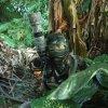 Phichit Wongsunthi profile photo