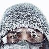 Alexandr Berdicevschi profile photo