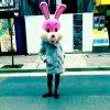 Macoogle Tokyo profile photo